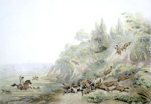 Hunting Jackals (Restrike Etching) by Samuel Howitt