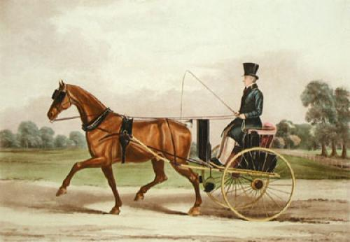 Silver Tail (Restrike Etching) by E.F. Lambert