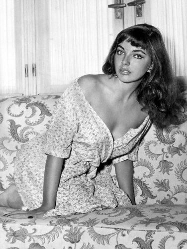 Joan Collins 2 by Celebrity Image