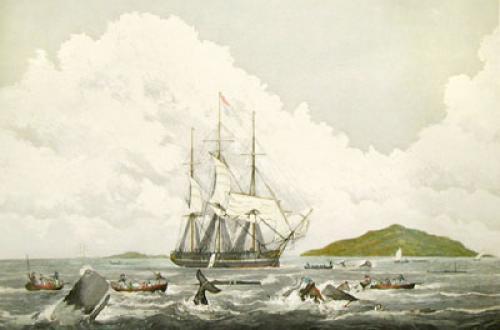 Southsea Whale Fishery (Restrike Etching) by W.J. Huggins