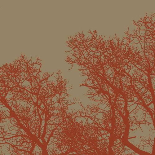 Cinnamon Tree I by Erin Clark