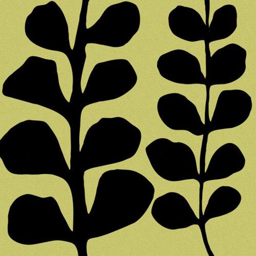 Black Fern on Green by Denise Duplock