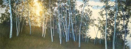 Hillside Birches by Elissa Gore