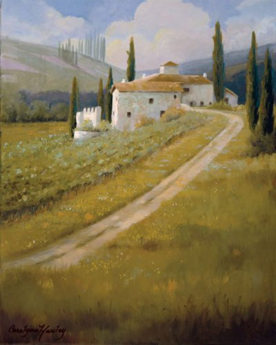 Tuscany Vineyard by Carolyne Hawley