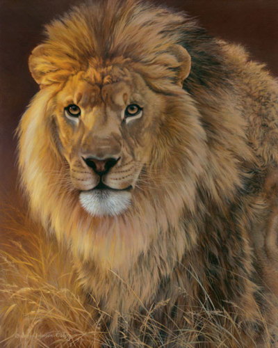 Power and Presence- African Lion by Johnson-Godsy