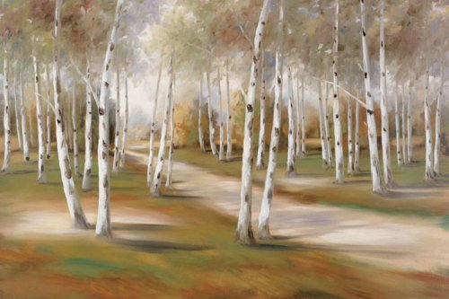 The Road Less Traveled by Marc Lucien
