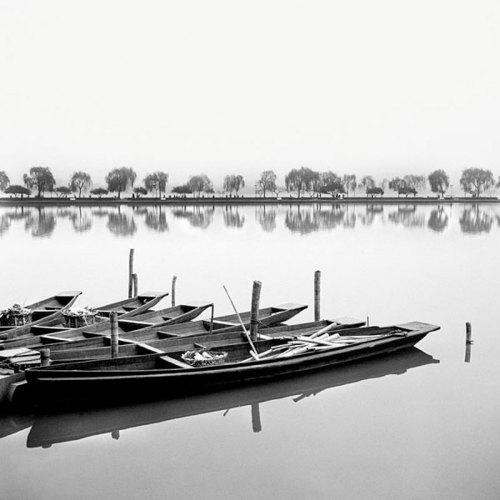 Reflection by Harold Silverman