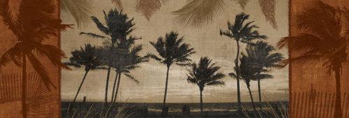 Sunlit Palms I by Harold Silverman