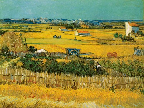 Field by Vincent Van Gogh