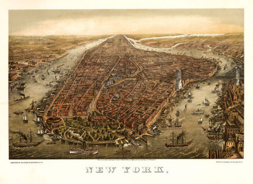 New York, 1873 by Ward Maps