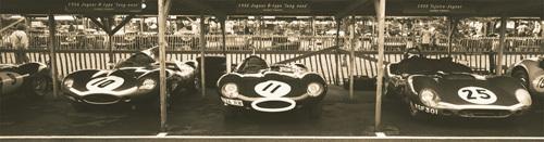 Jaguar D-Type - Tojeiro by Ben Wood