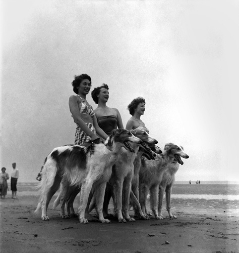 Girls and dogs, Blackpool 1952 by Mirrorpix