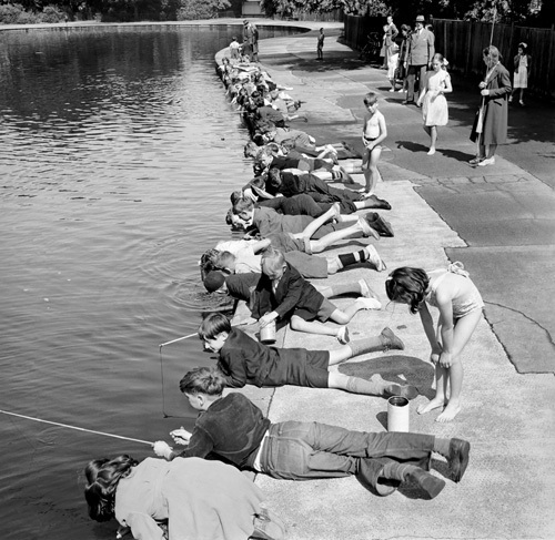 Children fishing in Victoria Park, London 1953 by Mirrorpix