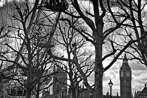Eye and Westminster (B&W) by Panorama London