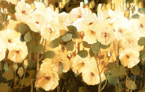 Cluster Of Blooms by Ann Neate