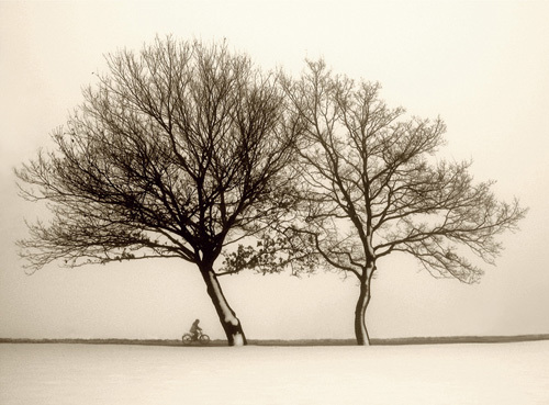 Foggy Evening by Ilona Wellmann