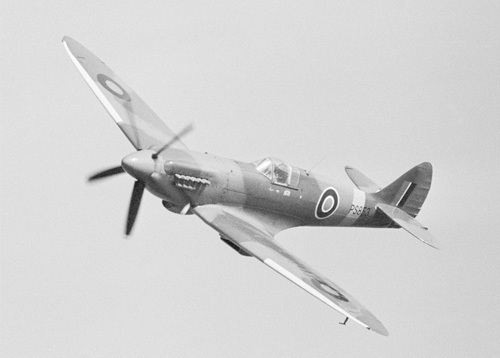 Spitfire by Anonymous