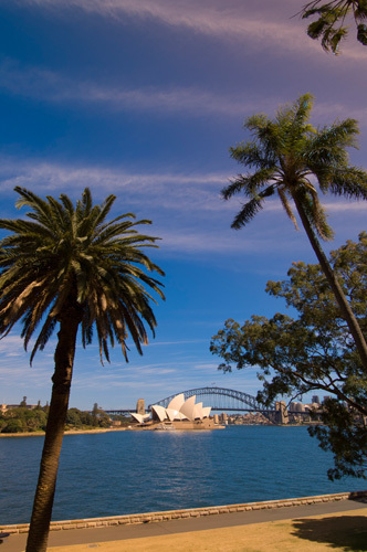 Opera House and Harbour Bridge, Sydney, New South Wales, Australia by Sergio Pitamitz
