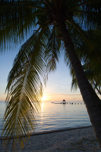 Rangiroa, Tuamotu Archipelago, French Polynesia by Sergio Pitamitz