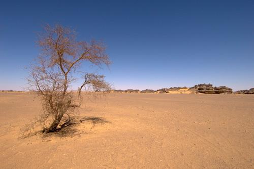 Akakus, Sahara desert, Fezzan, Libya by Sergio Pitamitz