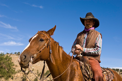 Black Hills Wild Horse Sanctuary, Hot Springs, South Dakota, USA by Sergio Pitamitz