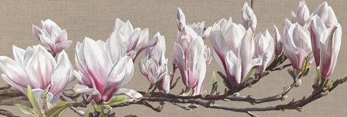 Magnolia Swathe by Sarah Caswell