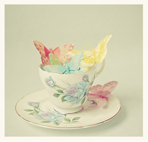 Cup of Butterflies by Cassia Beck