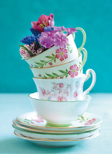 Pretty Cups and Flowers by Howard Shooter and Lauren Floodgate