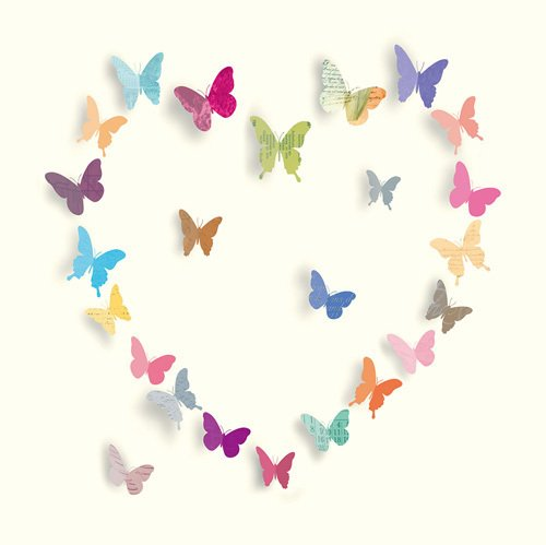 Butterfly Heart I by Sasha Blake