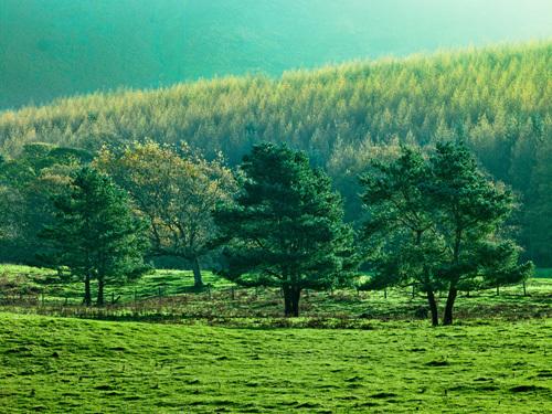 Lake District 89 by Assaf Frank