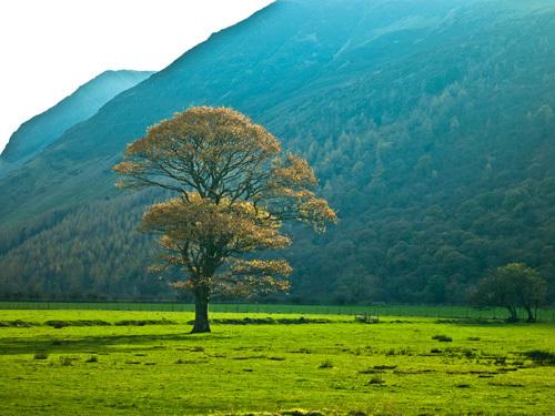 Lake District 488 by Assaf Frank
