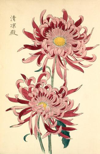 Seirioden by Keikwa Hasegawa