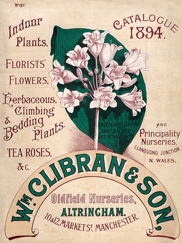 Catalogue 1894 by Wm. Clibran & Son