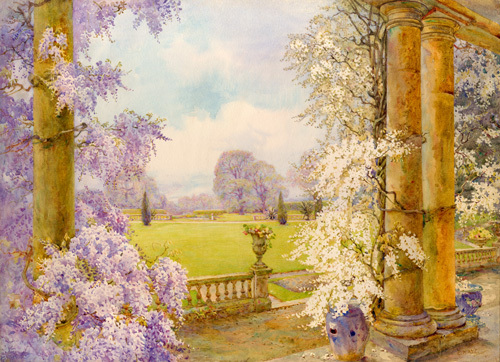 Wisteria by Edith Helena Adie