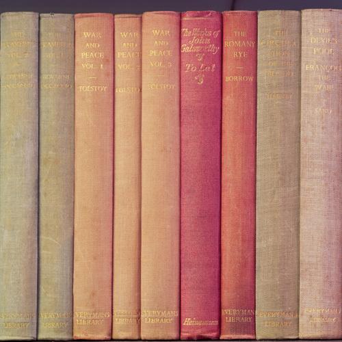 Tolstoy by Deborah Schenck