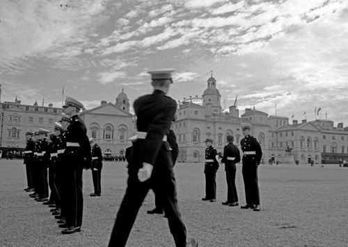 Line-up on Horse Guards Parade by Niki Gorick