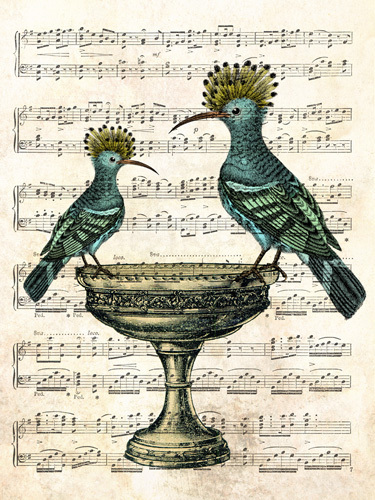 Birdsong by Marion McConaghie
