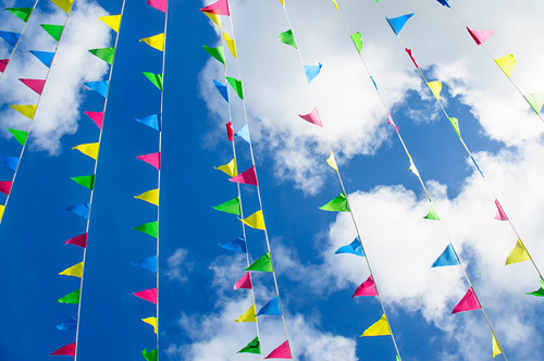 Summer Bunting by Scott Dunwoodie