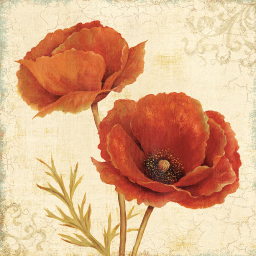 Poppy Bouquet II by Daphne Brissonnet