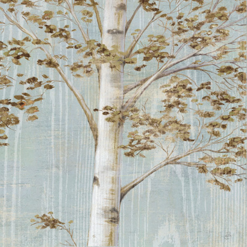 Birch Study II by Daphne Brissonnet