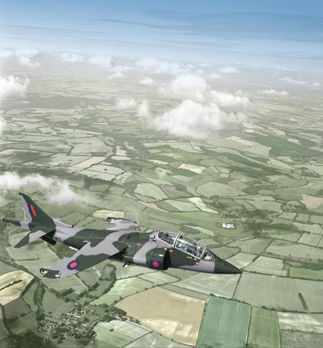 The Harrier by Anonymous