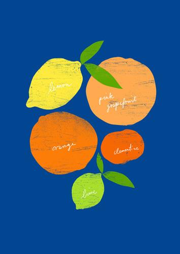 Citrus Love by Ana Zaja Petrak