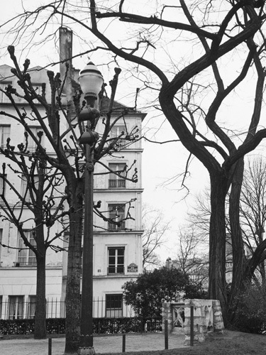 Winter Trees - Rue St-Julien le Pauvre, Paris 1963 by Alan Scales