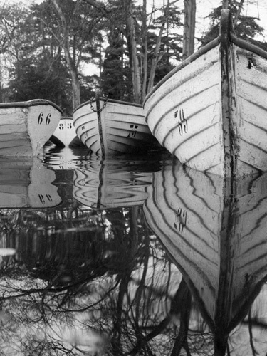 Lake Reflections, Paris 1960 by Alan Scales