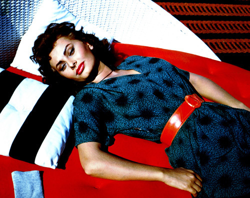 Sophia Loren (The Black Orchid) 1958 by Hollywood Photo Archive