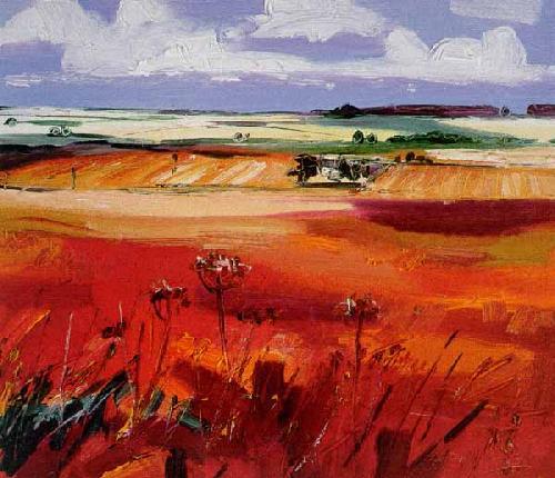 Perthshire Fields by Judith I. Bridgland