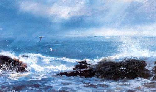 Neist Point, Skye by James Bartholomew