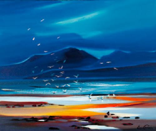 Flock of Gulls by Pam Carter