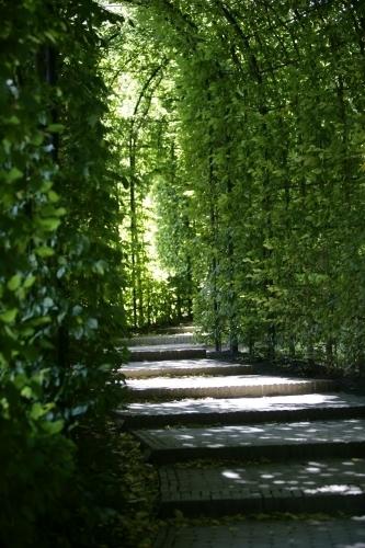 The Alnwick Garden IV by Richard Osbourne