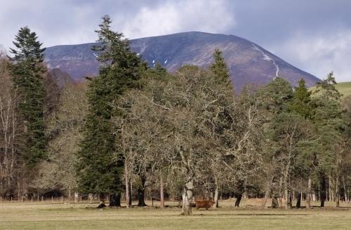 Beinn a' Ghlo - Scotland by Richard Osbourne